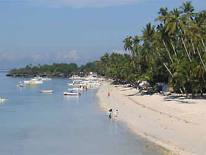 Book a holiday or vacation staying at Alona Beach, Panglao Island, Bohol, in the Philippines