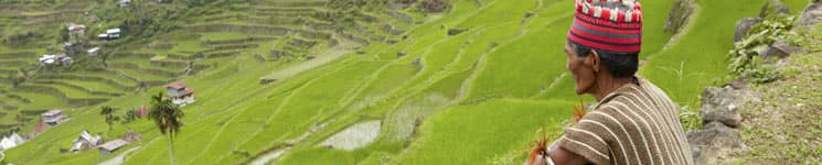 Rice Terraces & Ifugao, Philippines