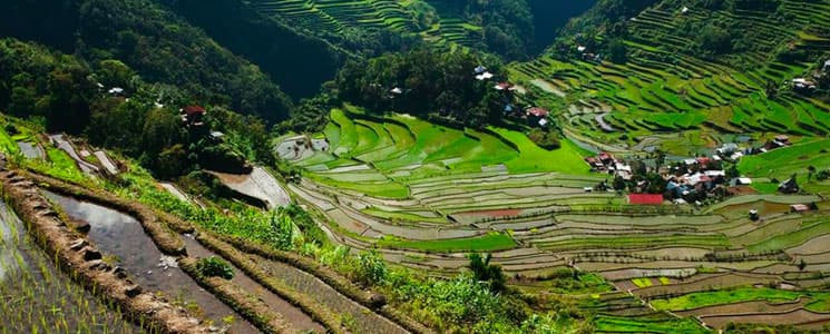 Philippines Rice Terraces Tours